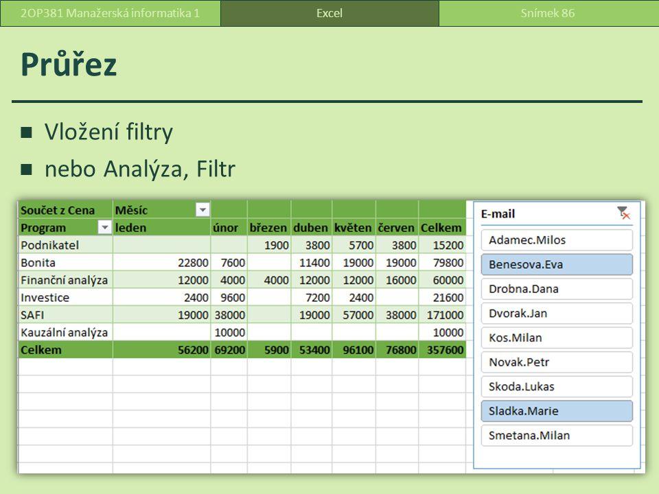 Průřez Vložení filtry nebo Analýza, Filtr ExcelSnímek 862OP381 Manažerská informatika 1