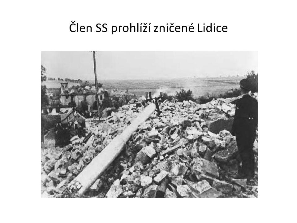 Českoslovenští vojáci v zahraničí Českoslovenští vojáci odcházeli tajně už před vznikem protektorátu do zahraničí Bojovali v polské armádě, ve Francii, Velké Británii – letci, v Sovětském svazu Účastnili se bitvy o Anglii S Rudou armádou osvobozovali Československo