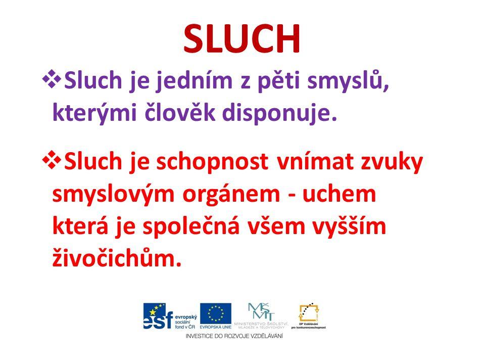 SLUCH  Sluch je jedním z pěti smyslů, kterými člověk disponuje.  Sluch je schopnost vnímat zvuky smyslovým orgánem - uchem která je společná všem vy