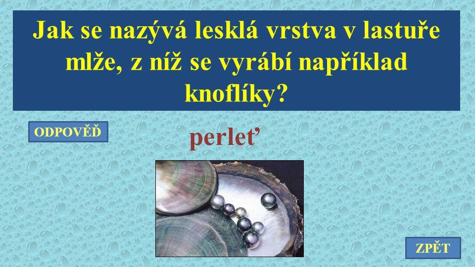 Jak se nazývá lesklá vrstva v lastuře mlže, z níž se vyrábí například knoflíky? perleť ZPĚT ODPOVĚĎ