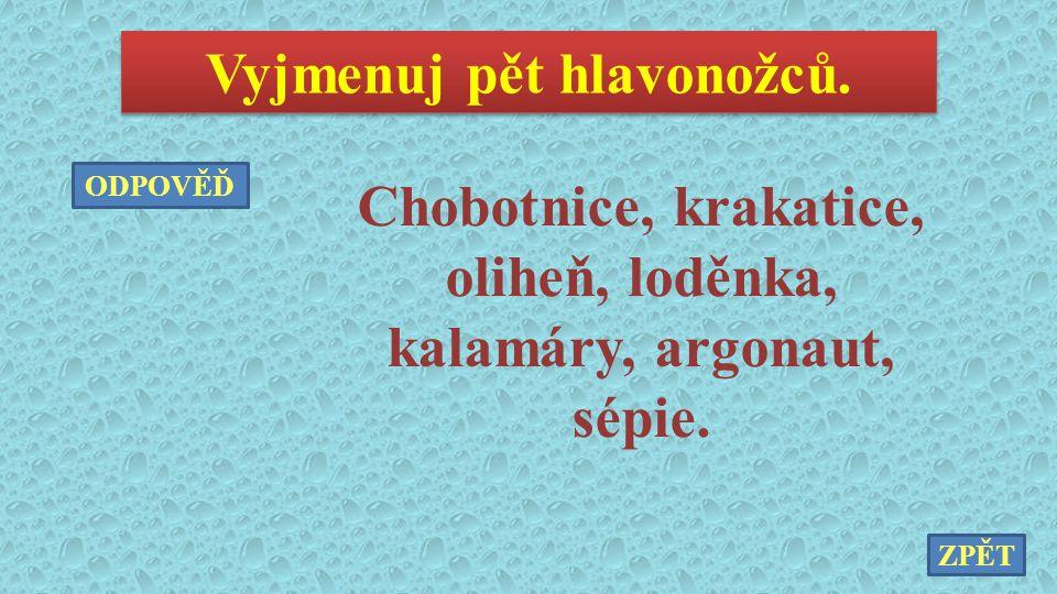 Vyjmenuj pět hlavonožců. Chobotnice, krakatice, oliheň, loděnka, kalamáry, argonaut, sépie. ZPĚT ODPOVĚĎ