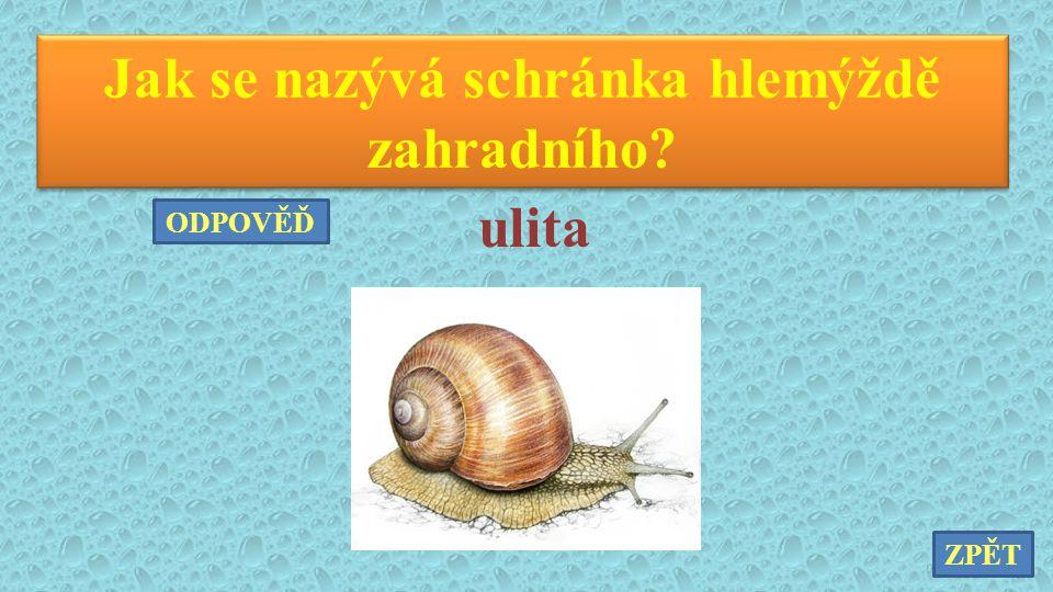 Jak se nazývá schránka hlemýždě zahradního? ulita ZPĚT ODPOVĚĎ