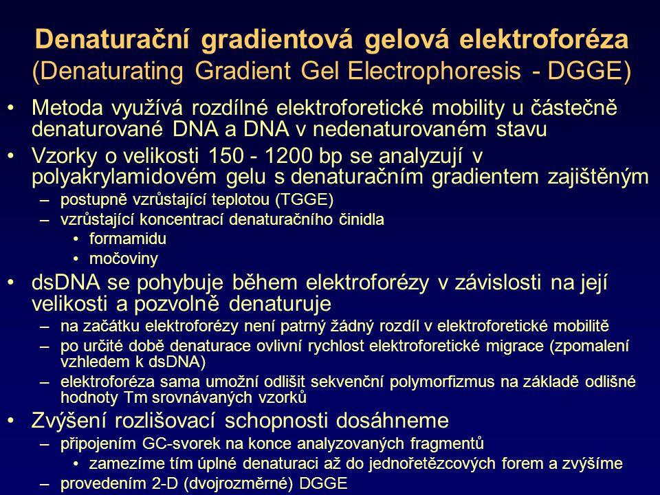 Denaturační gradientová gelová elektroforéza (Denaturating Gradient Gel Electrophoresis - DGGE) Metoda využívá rozdílné elektroforetické mobility u čá