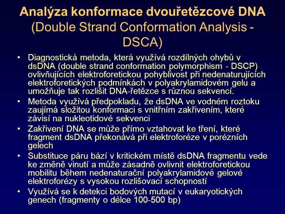 Analýza konformace dvouřetězcové DNA (Double Strand Conformation Analysis - DSCA) Diagnostická metoda, která využívá rozdílných ohybů v dsDNA (double