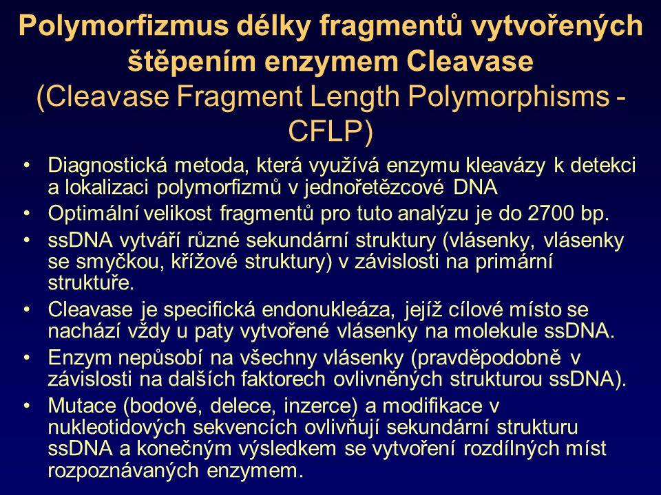 Polymorfizmus délky fragmentů vytvořených štěpením enzymem Cleavase (Cleavase Fragment Length Polymorphisms - CFLP) Diagnostická metoda, která využívá