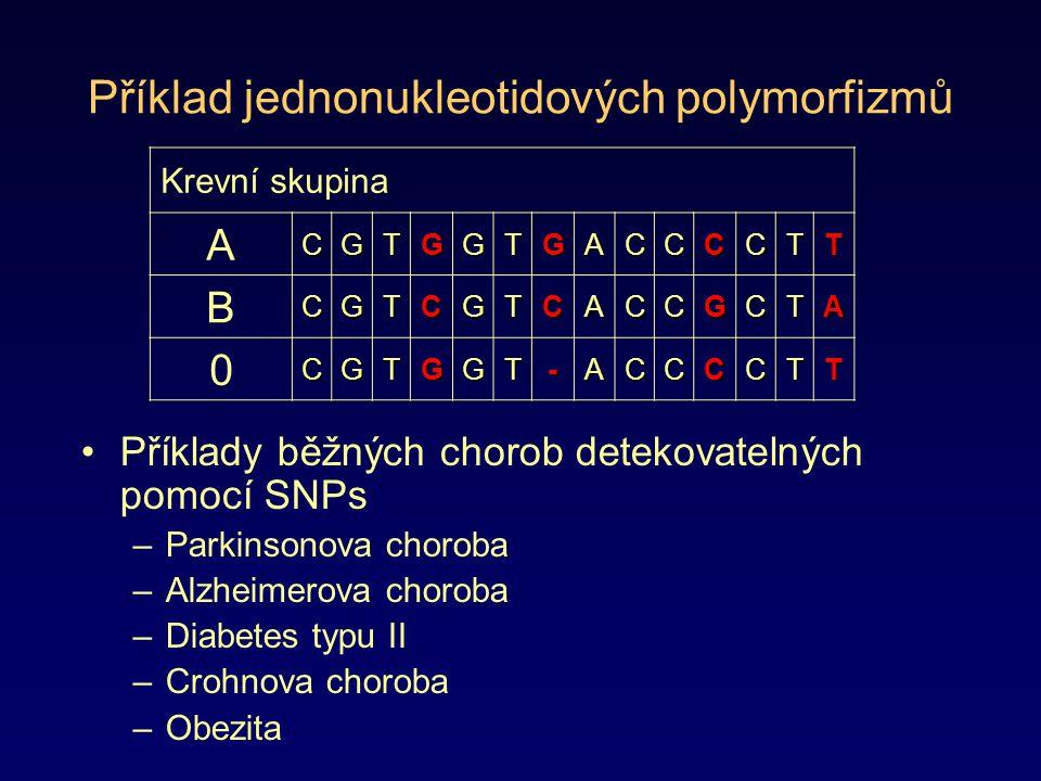 Příklad jednonukleotidových polymorfizmů Příklady běžných chorob detekovatelných pomocí SNPs –Parkinsonova choroba –Alzheimerova choroba –Diabetes typ