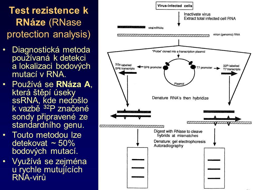 Test rezistence k RNáze (RNase protection analysis) Diagnostická metoda používaná k detekci a lokalizaci bodových mutací v RNA. Používá se RNáza A, kt