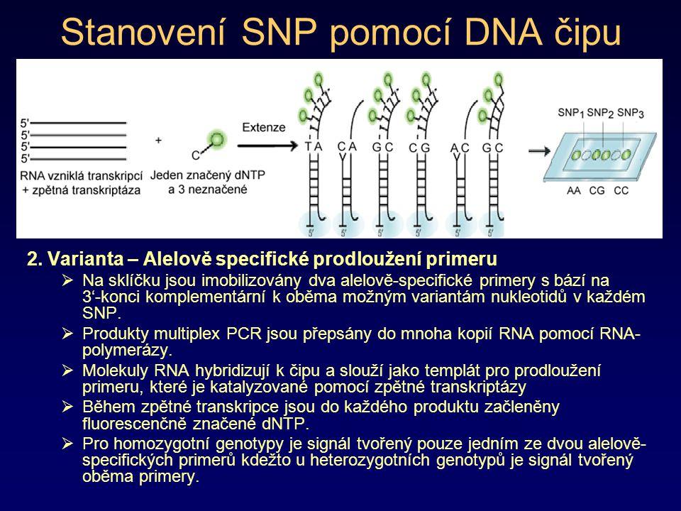 Stanovení SNP pomocí DNA čipu 2. Varianta – Alelově specifické prodloužení primeru  Na sklíčku jsou imobilizovány dva alelově-specifické primery s bá