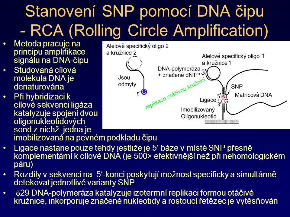 Stanovení SNP pomocí DNA čipu - RCA (Rolling Circle Amplification) Metoda pracuje na principu amplifikace signálu na DNA-čipu Studovaná cílová molekul