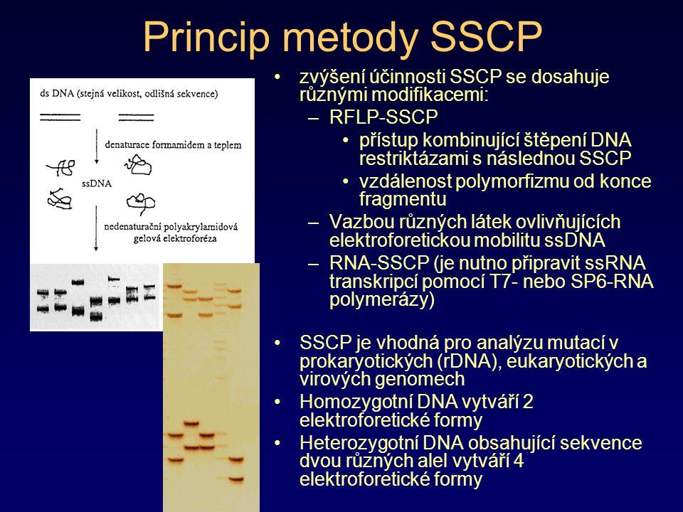 Princip metody SSCP zvýšení účinnosti SSCP se dosahuje různými modifikacemi: –RFLP-SSCP přístup kombinující štěpení DNA restriktázami s následnou SSCP