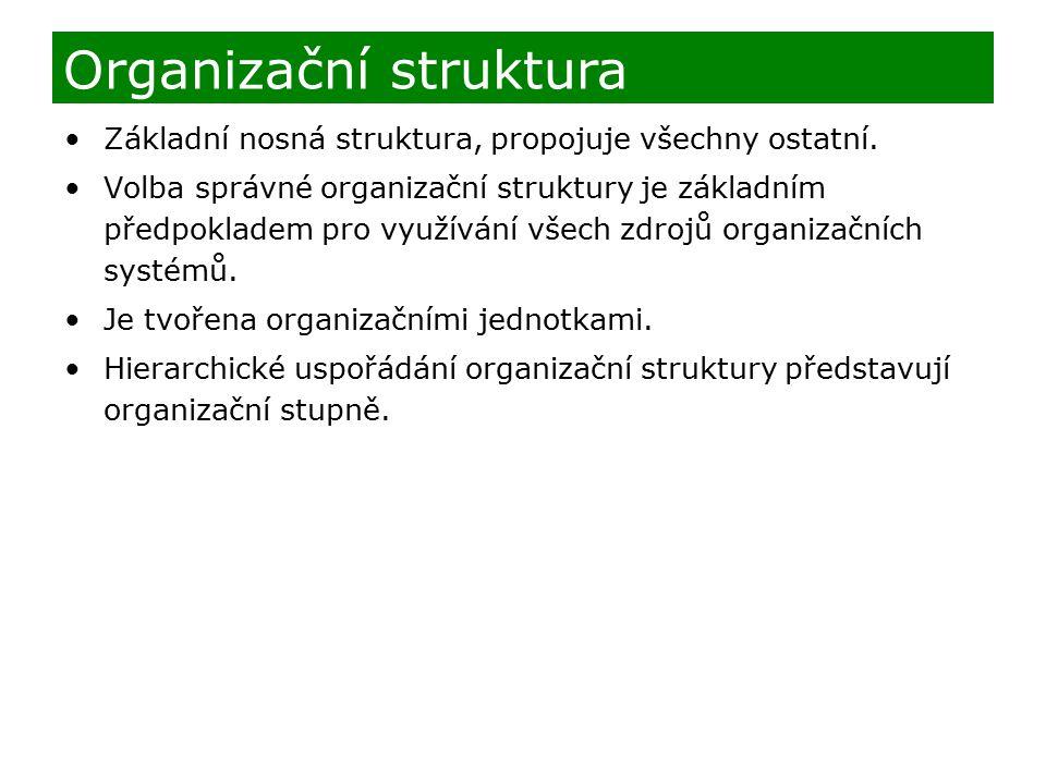 Základní nosná struktura, propojuje všechny ostatní. Volba správné organizační struktury je základním předpokladem pro využívání všech zdrojů organiza