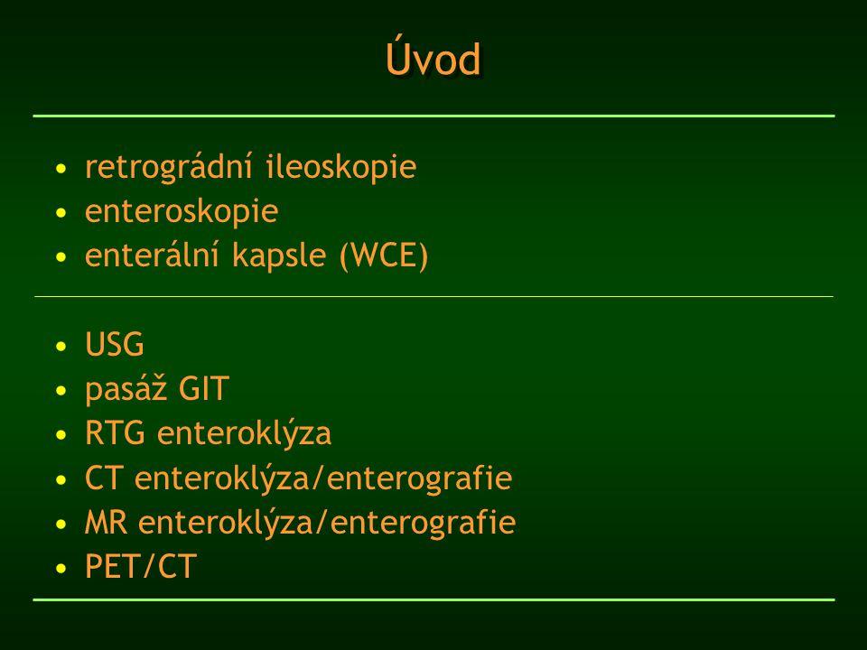 Úvod retrográdní ileoskopie enteroskopie enterální kapsle (WCE) USG pasáž GIT RTG enteroklýza CT enteroklýza/enterografie MR enteroklýza/enterografie