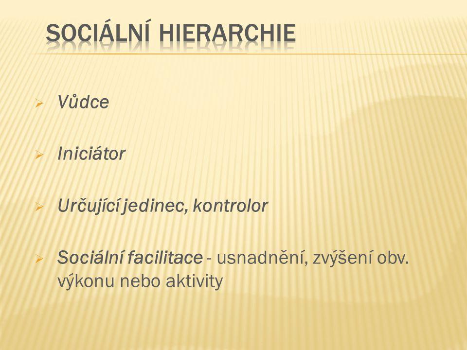  Vůdce  Iniciátor  Určující jedinec, kontrolor  Sociální facilitace - usnadnění, zvýšení obv. výkonu nebo aktivity
