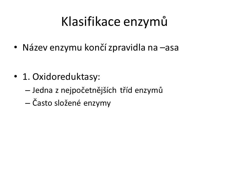Klasifikace enzymů Název enzymu končí zpravidla na –asa 1. Oxidoreduktasy: – Jedna z nejpočetnějších tříd enzymů – Často složené enzymy