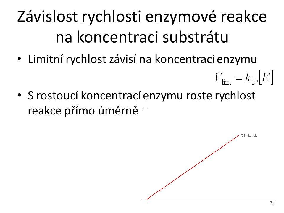 Závislost rychlosti enzymové reakce na koncentraci substrátu Limitní rychlost závisí na koncentraci enzymu S rostoucí koncentrací enzymu roste rychlos