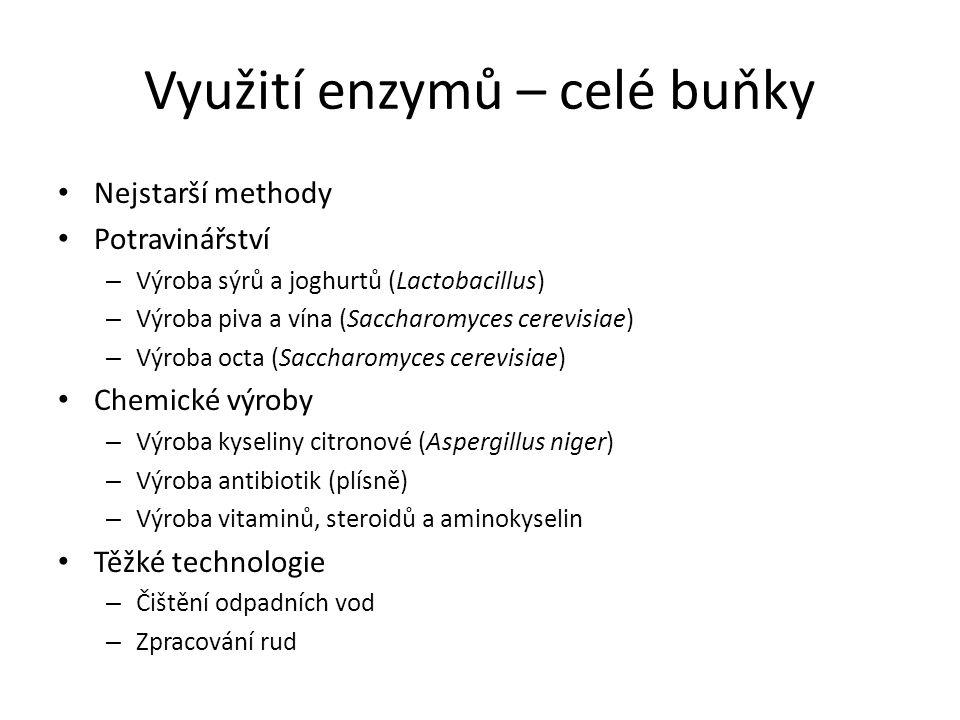 Využití enzymů – celé buňky Nejstarší methody Potravinářství – Výroba sýrů a joghurtů (Lactobacillus) – Výroba piva a vína (Saccharomyces cerevisiae)
