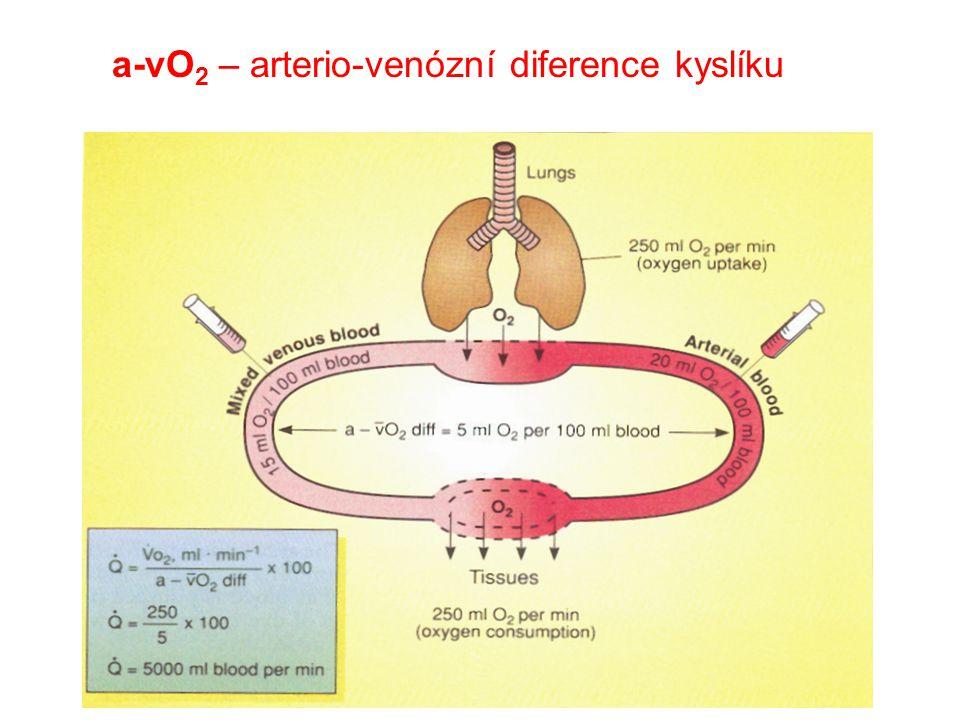 a-vO 2 – arterio-venózní diference kyslíku