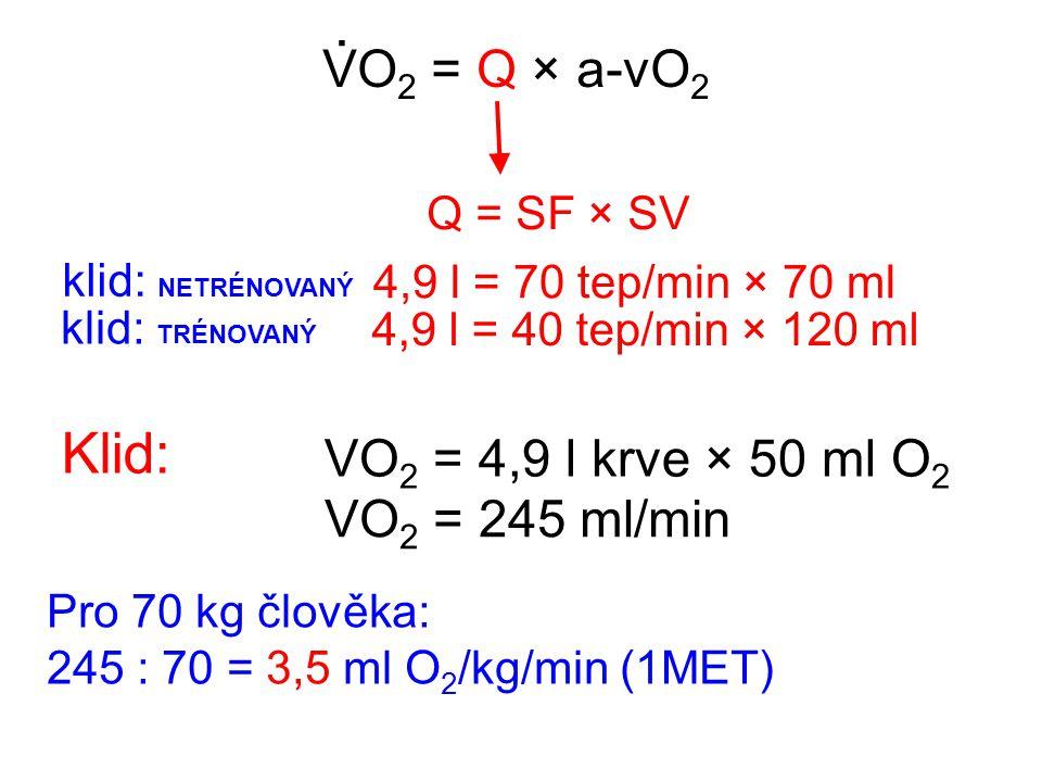 VO 2 = Q × a-vO 2. Q = SF × SV 4,9 l = 70 tep/min × 70 ml klid: NETRÉNOVANÝ 4,9 l = 40 tep/min × 120 ml klid: TRÉNOVANÝ Pro 70 kg člověka: 245 : 70 =