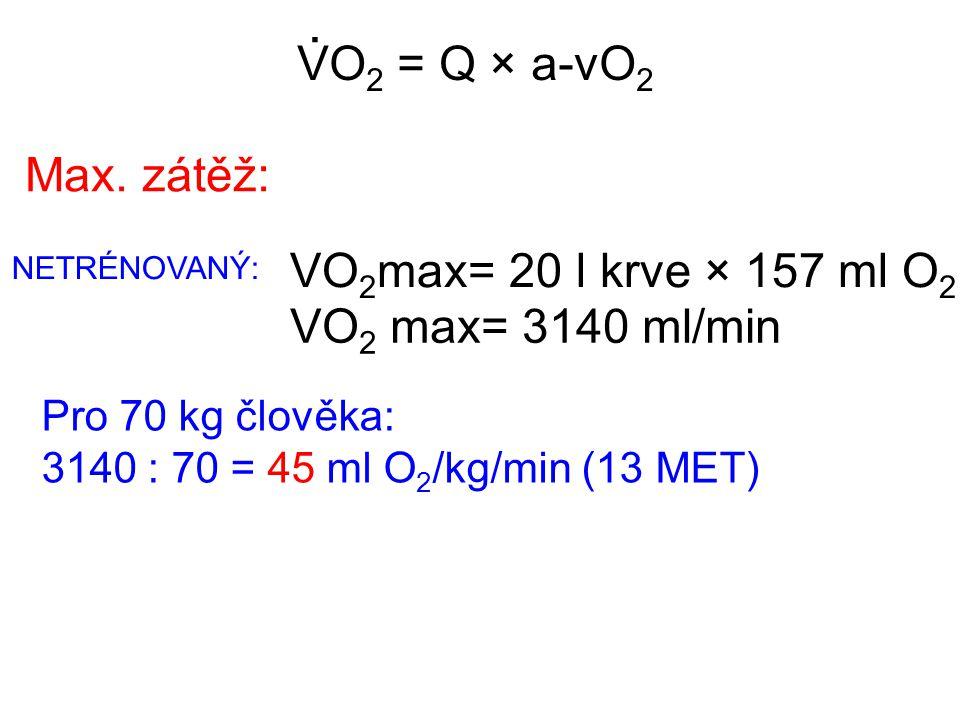VO 2 = Q × a-vO 2. Pro 70 kg člověka: 3140 : 70 = 45 ml O 2 /kg/min (13 MET) Max. zátěž: VO 2 max= 20 l krve × 157 ml O 2 VO 2 max= 3140 ml/min NETRÉN