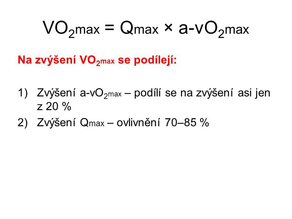 Na zvýšení VO 2 max se podílejí: 1)Zvýšení a-vO 2 max – podílí se na zvýšení asi jen z 20 % 2)Zvýšení Q max – ovlivnění 70–85 % VO 2 max = Q max × a-v