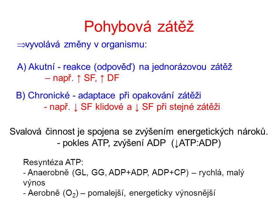 Schéma transportu O 2 a CO 2 (Wasserman, 1999)