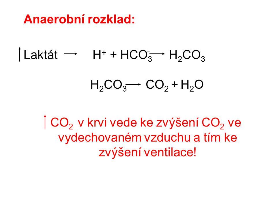 Anaerobní rozklad: Laktát H + + HCO 3 H 2 CO 3 H 2 CO 3 CO 2 + H 2 O CO 2 v krvi vede ke zvýšení CO 2 ve vydechovaném vzduchu a tím ke zvýšení ventila