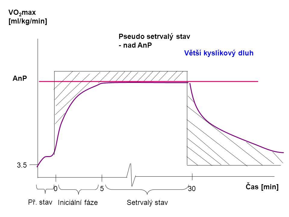 Čas [min] VO 2 max [ml/kg/min] AnP 0 5 30 3.5 Př. stav Iniciální fáze Setrvalý stav Pseudo setrvalý stav - nad AnP Větší kyslíkový dluh