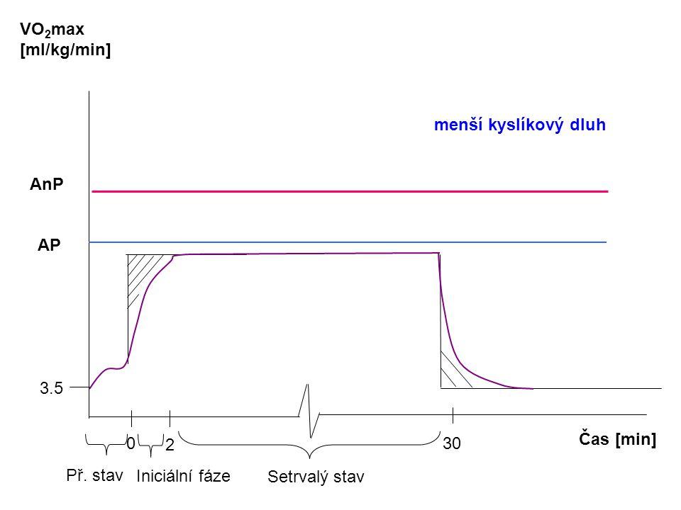 Čas [min] VO 2 max [ml/kg/min] AnP 0 2 30 3.5 Př. stav Iniciální fáze Setrvalý stav AP menší kyslíkový dluh