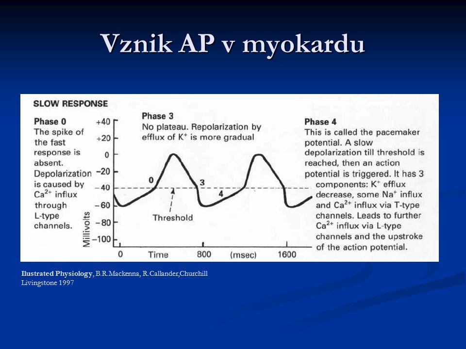 Vznik AP v myokardu Ilustrated Physiology, B.R.Mackenna, R.Callander,Churchill Livingstone 1997