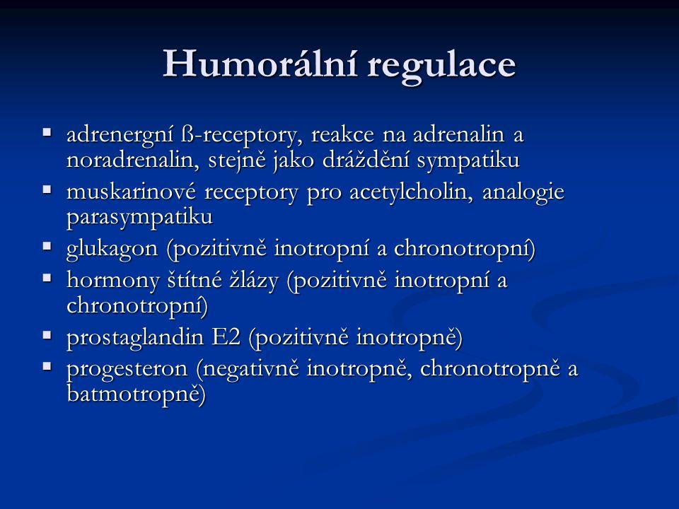Humorální regulace  adrenergní ß-receptory, reakce na adrenalin a noradrenalin, stejně jako dráždění sympatiku  muskarinové receptory pro acetylcholin, analogie parasympatiku  glukagon (pozitivně inotropní a chronotropní)  hormony štítné žlázy (pozitivně inotropní a chronotropní)  prostaglandin E2 (pozitivně inotropně)  progesteron (negativně inotropně, chronotropně a batmotropně)