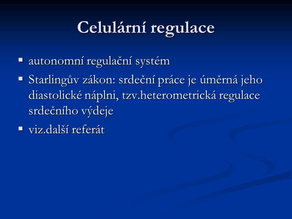 Celulární regulace  autonomní regulační systém  Starlingův zákon: srdeční práce je úměrná jeho diastolické náplni, tzv.heterometrická regulace srdečního výdeje  viz.další referát