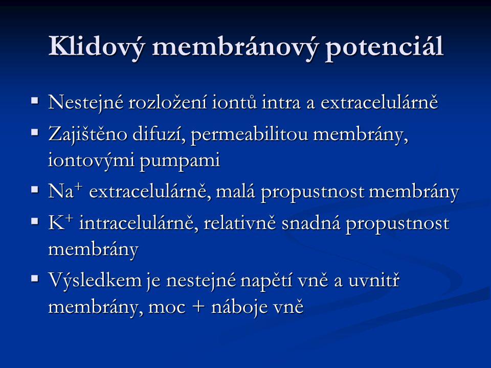 Klidový membránový potenciál  Nestejné rozložení iontů intra a extracelulárně  Zajištěno difuzí, permeabilitou membrány, iontovými pumpami  Na + extracelulárně, malá propustnost membrány  K + intracelulárně, relativně snadná propustnost membrány  Výsledkem je nestejné napětí vně a uvnitř membrány, moc + náboje vně
