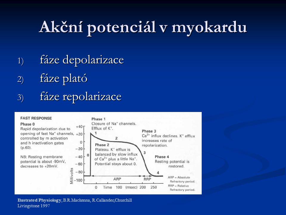 Akční potenciál v myokardu 1) fáze depolarizace 2) fáze plató 3) fáze repolarizace Ilustrated Physiology, B.R.Mackenna, R.Callander,Churchill Livingstone 1997