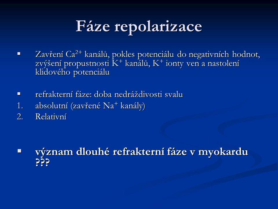 Fáze repolarizace  Zavření Ca 2+ kanálů, pokles potenciálu do negativních hodnot, zvýšení propustnosti K + kanálů, K + ionty ven a nastolení klidového potenciálu  refrakterní fáze: doba nedráždivosti svalu 1.absolutní (zavřené Na + kanály) 2.Relativní  význam dlouhé refrakterní fáze v myokardu ???