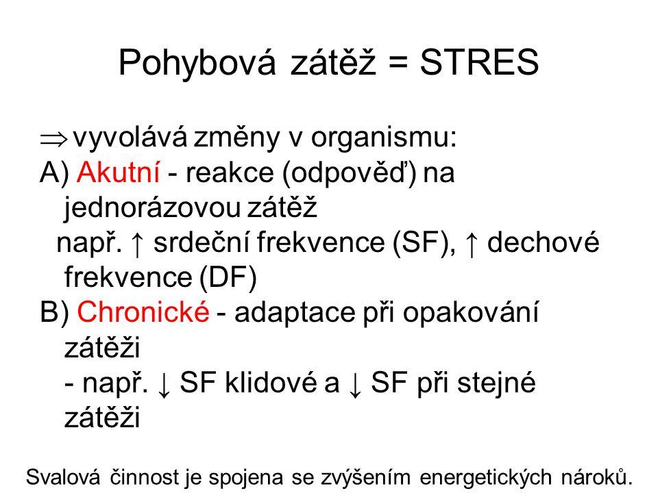 Pohybová zátěž = STRES  vyvolává změny v organismu: A) Akutní - reakce (odpověď) na jednorázovou zátěž např. ↑ srdeční frekvence (SF), ↑ dechové frek