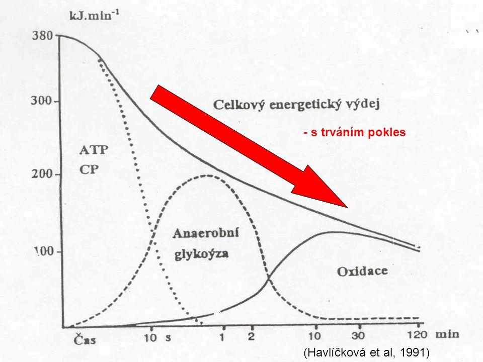 - s trváním pokles (Havlíčková et al, 1991)
