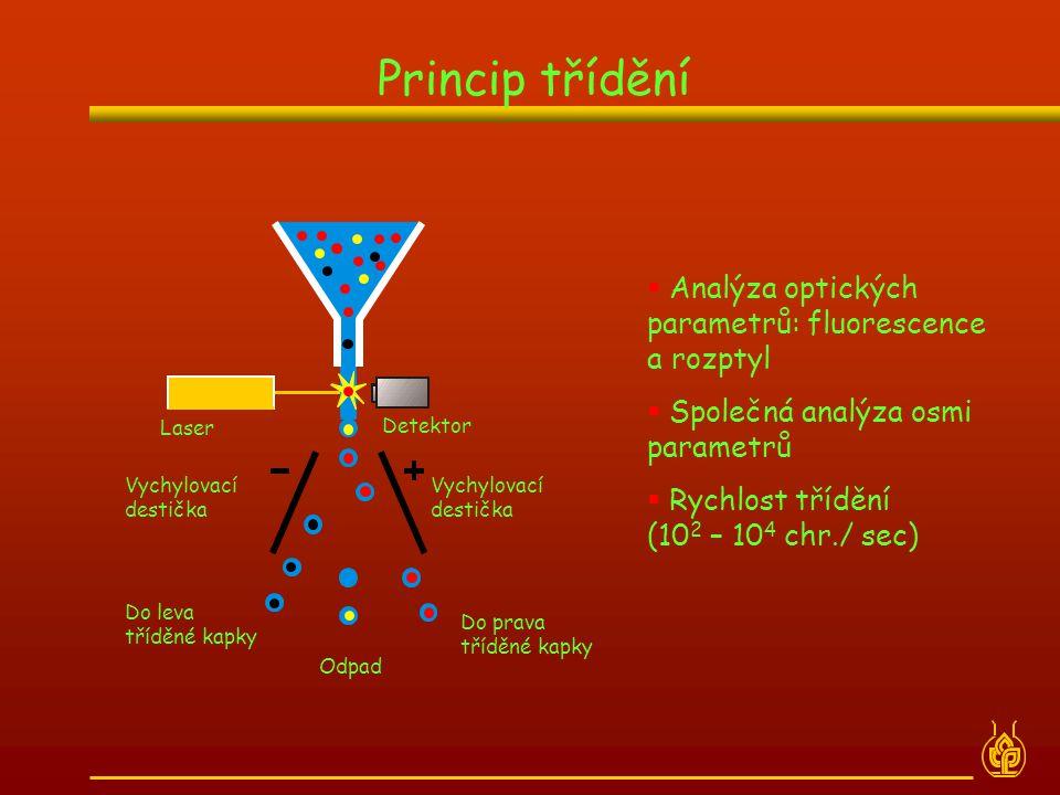 Princip třídění  Analýza optických parametrů: fluorescence a rozptyl  Společná analýza osmi parametrů  Rychlost třídění (10 2 – 10 4 chr./ sec)