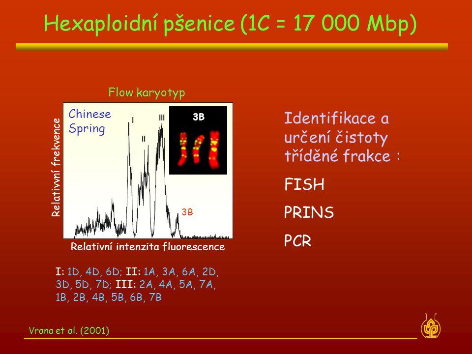 Flow karyotyp Relativní intenzita fluorescence Relativvní frekvence Chinese Spring I II III I: 1D, 4D, 6D; II: 1A, 3A, 6A, 2D, 3D, 5D, 7D; III: 2A, 4A