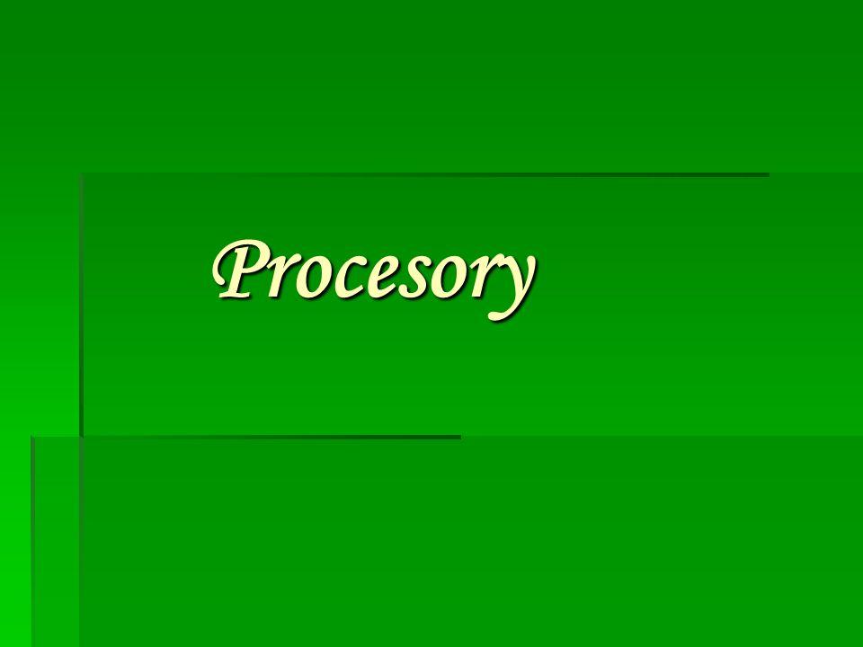 Co je procesor.