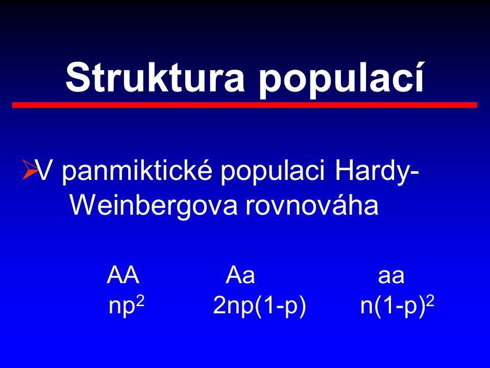 Struktura populací  V panmiktické populaci Hardy- Weinbergova rovnováha AA Aa aa np 2 2np(1-p) n(1-p) 2