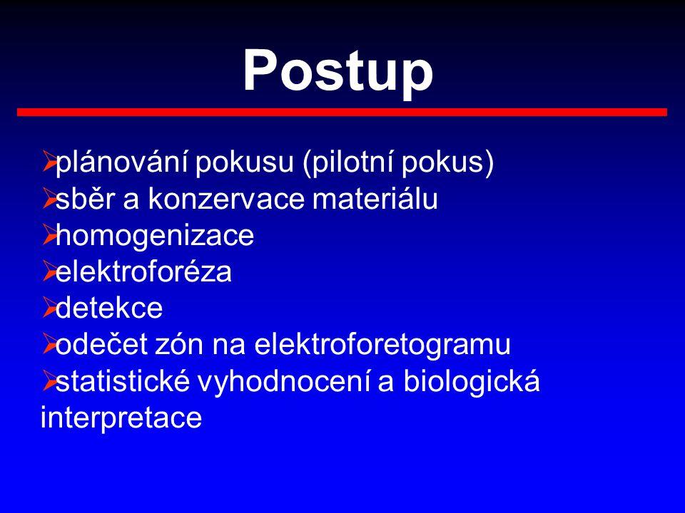 Postup  plánování pokusu (pilotní pokus)  sběr a konzervace materiálu  homogenizace  elektroforéza  detekce  odečet zón na elektroforetogramu 