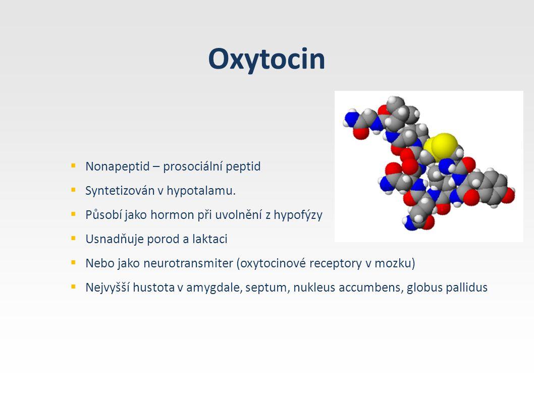 Oxytocin  Nonapeptid – prosociální peptid  Syntetizován v hypotalamu.  Působí jako hormon při uvolnění z hypofýzy  Usnadňuje porod a laktaci  Neb