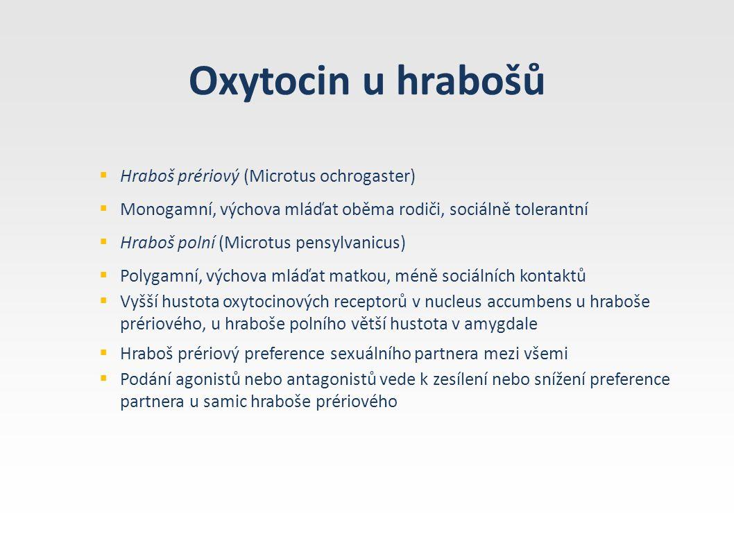 Oxytocin u hrabošů  Hraboš prériový (Microtus ochrogaster)  Monogamní, výchova mláďat oběma rodiči, sociálně tolerantní  Hraboš polní (Microtus pen