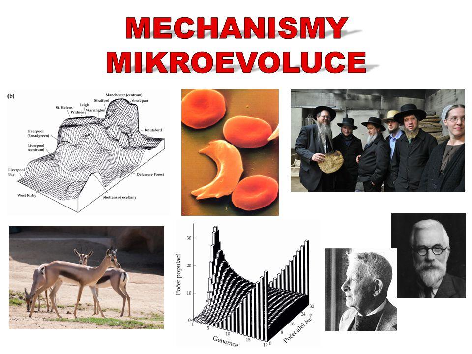 Mikroevoluce = vznik a osud genetické variability na druhové a nižší úrovni  děje a mechanismy v populacích Evoluce = genetická změna populací v čase a prostoru Evoluce = změna frekvence alel v populacích 3 základní premisy populační genetiky: 1.DNA se replikuje 2.DNA mutuje a rekombinuje 3.Fenotypy vznikají interakcí DNA a prostředí