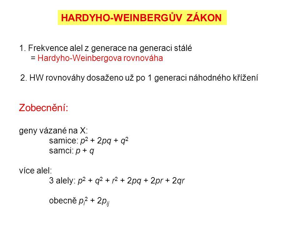 1. Frekvence alel z generace na generaci stálé = Hardyho-Weinbergova rovnováha 2. HW rovnováhy dosaženo už po 1 generaci náhodného křížení Zobecnění: