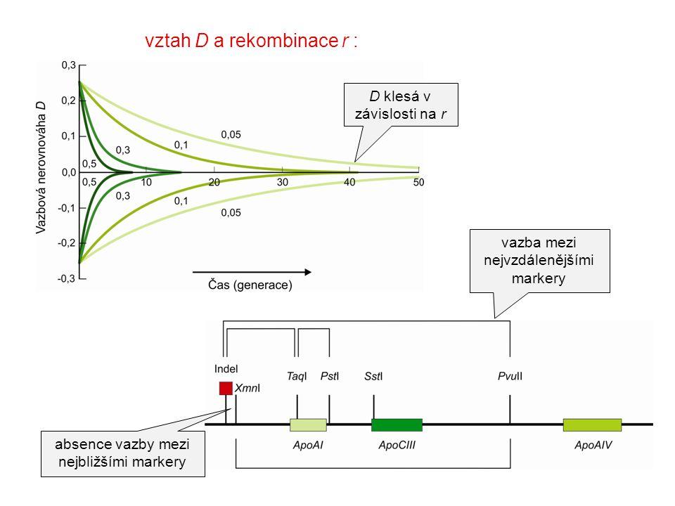 vztah D a rekombinace r : vazba mezi nejvzdálenějšími markery absence vazby mezi nejbližšími markery D klesá v závislosti na r