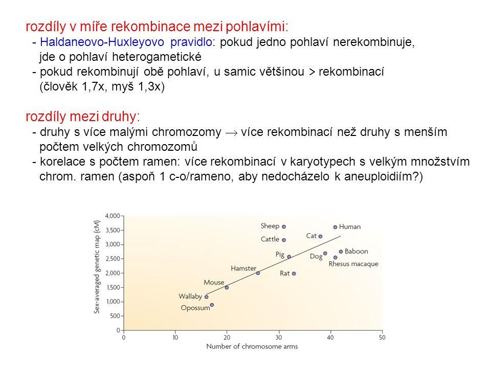 rozdíly v míře rekombinace mezi pohlavími: - Haldaneovo-Huxleyovo pravidlo: pokud jedno pohlaví nerekombinuje, jde o pohlaví heterogametické - pokud r