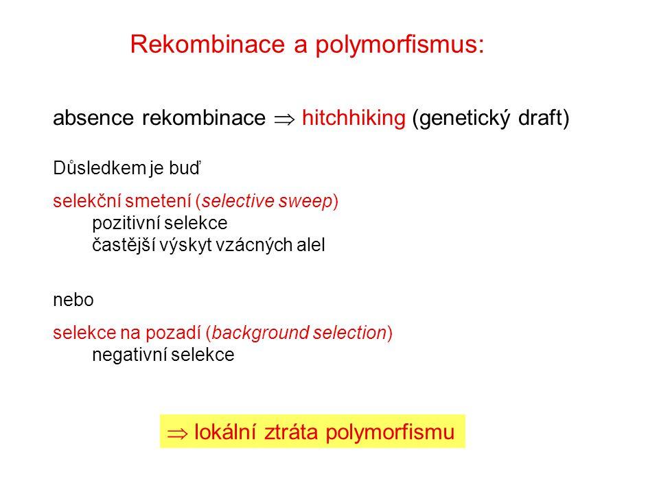 Rekombinace a polymorfismus: Důsledkem je buď selekční smetení (selective sweep) pozitivní selekce častější výskyt vzácných alel nebo selekce na pozad