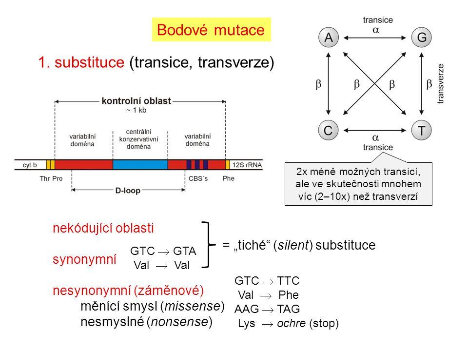 1. substituce (transice, transverze) Bodové mutace 2x méně možných transicí, ale ve skutečnosti mnohem víc (2–10x) než transverzí nekódující oblasti s