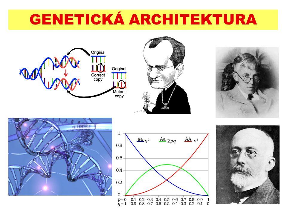 Genetická architektura: počet lokusů (popř.